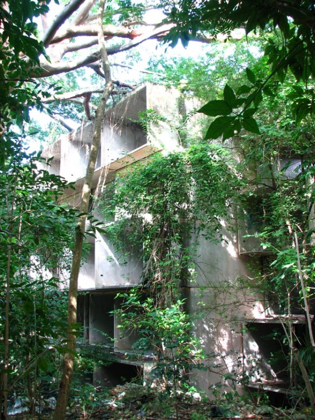 Safdie's module lost amidst Puerto Rico's vegetation. Photo by Desayuno Calle, 2008.
